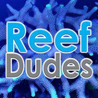 ReefDudes